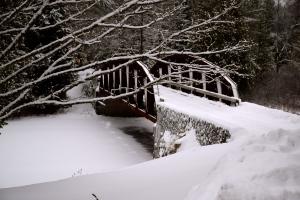 Bridge to Santanoni Preserve