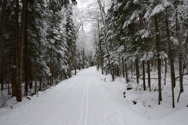 Snow covered Cross-Country ski trail through Santanoni Preserve