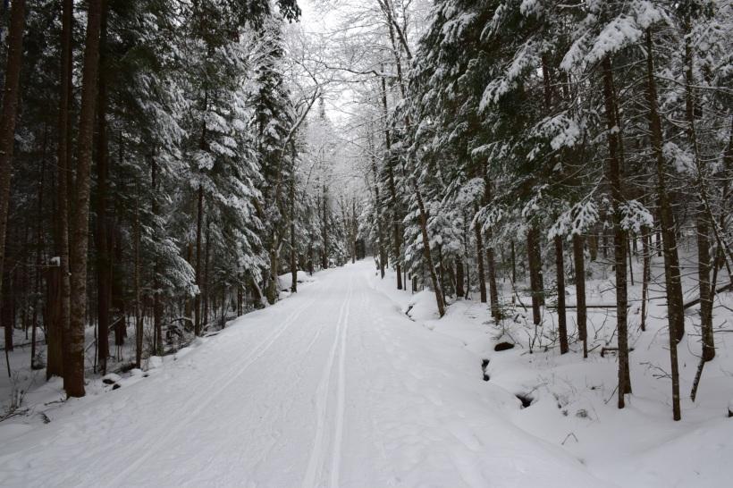 Snow covered Cross-Country ski trail through Santanoni Preserve