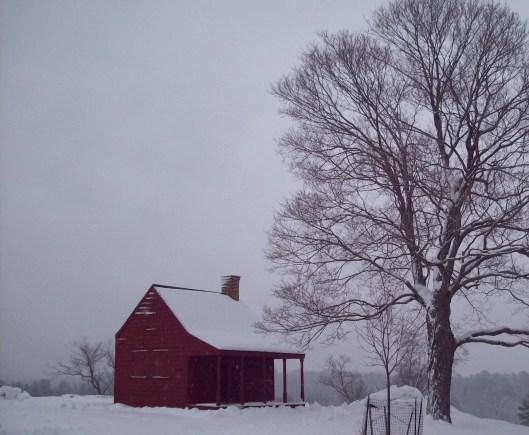 Peaceful in winter