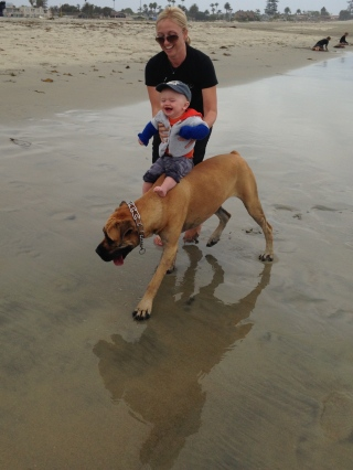 Allison, Tanner and Mojo at the beach