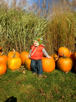 Which pumpkin? Tanner says - I'll take them all