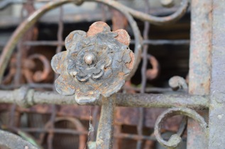 Broken Rosette on fence