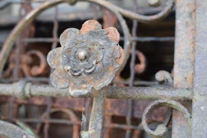 Broken Rosette on fence