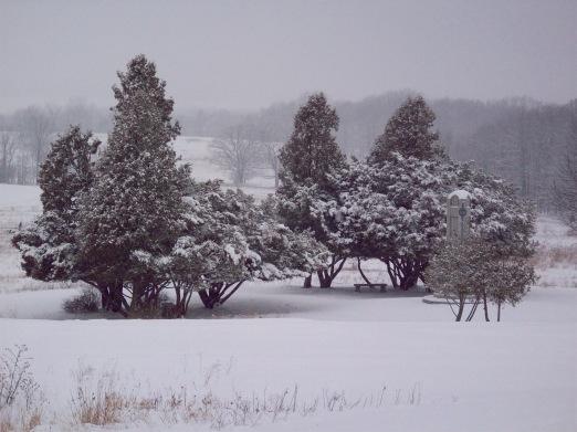 Saratoga National Park on a snowy day