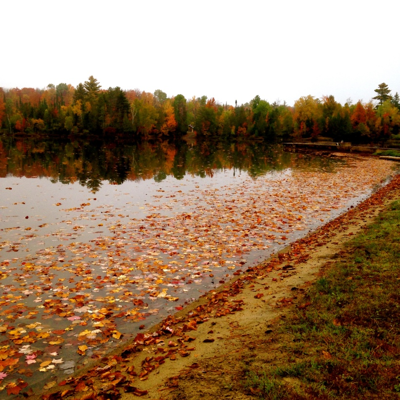 Autumn at Adirondack Lake located in Indian Lake, NY