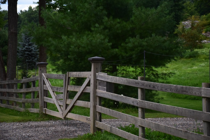 Fences out in the country set up boundaries