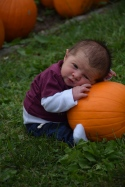 Baby Colt's first pumpkin photo