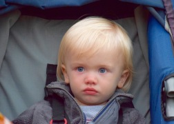 My grandson, Tanner - contemplating whether he liked what he was seeing or not
