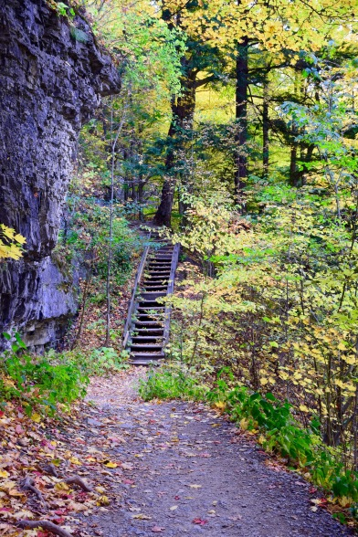 Some paths have stairs leading to the unknown