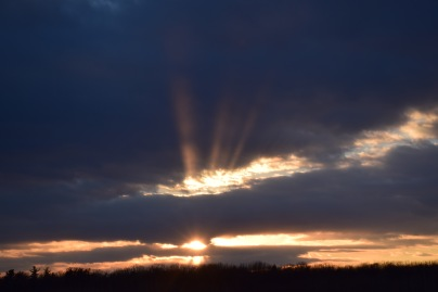 Beautiful rays of light filling the sky