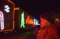 Colt mesmerized by the lights and holiday music