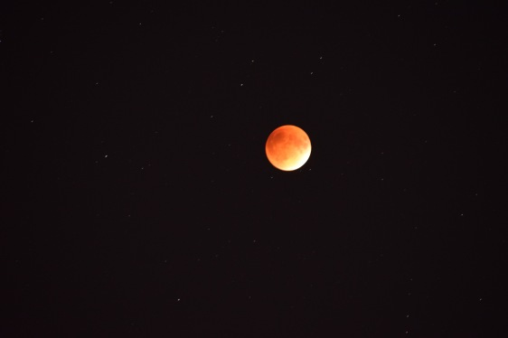 Red Moon glowing in an otherwise dark sky