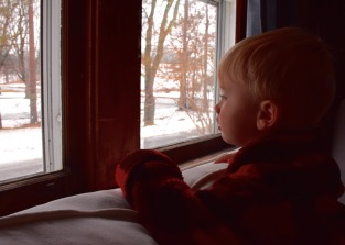 Tanner enjoying the snow out the window
