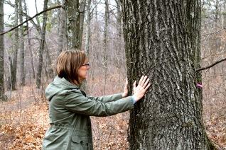 Hugging in the Albany Pine Bush